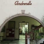 Andronelle